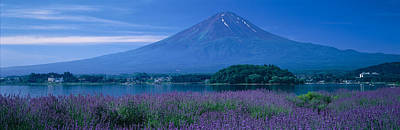 Japan House Photograph - Mount Fuji Japan by Panoramic Images