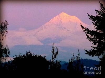Photograph - Mount Hood In Pink by Susan Garren