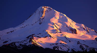 Mount Hood Last Light Art Print by Darren  White