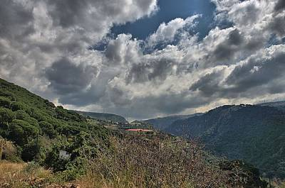 Photograph - Mount Lebanon by Steven Richman