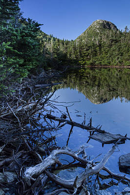 Forest Scenes Photograph - Vermont Mountain Reflection Forest Lake Of The Clouds by Andy Gimino