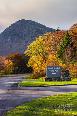 Photograph - Mount Mitchell by Scott Hervieux