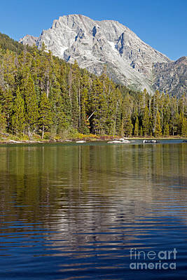 Photograph - Mount Moran String Lake Grand Teton National Park by Fred Stearns