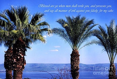 Mount Of The Beatitudes Art Print
