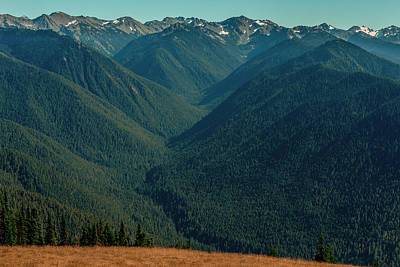 Photograph - Mount Olympus- Olympic National Park  by Tim Bryan