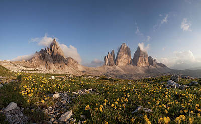 Tre Wall Art - Photograph - Mount Paterno, Tre Cime, Yellow Flowers by Alessandro Petri