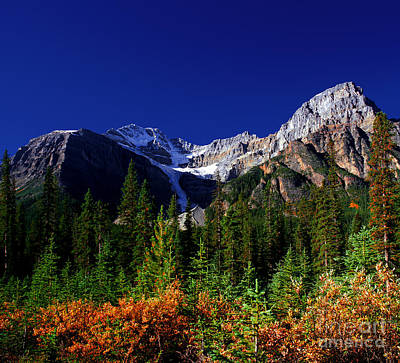 Photograph - Mount Patterson In Fall by Terry Elniski