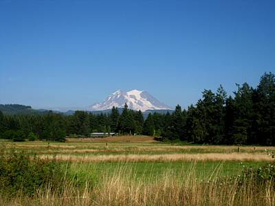 Mt. Massive Photograph - Mount Rainier 8 by Kathy Long