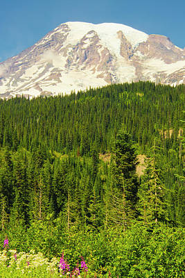 Mount Rainier And Wildflowers, Louise Art Print