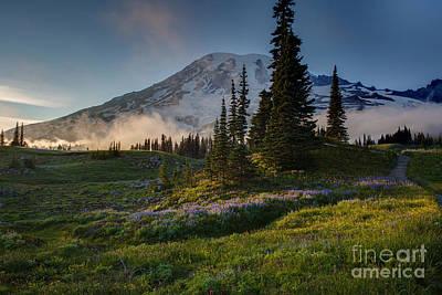 Washington Nationals Photograph - Mount Rainier Evening Fog by Mike Reid