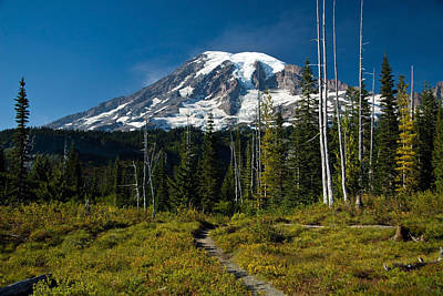 Art Print featuring the photograph Mount Rainier From Snow Lake Trail by Bob Noble Photography