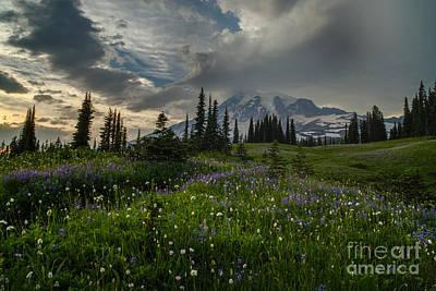 Mount Rainier Meadows Storm Brewing Art Print by Mike Reid