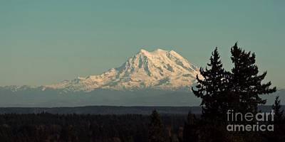 Photograph - Mount Rainier by Patricia Strand