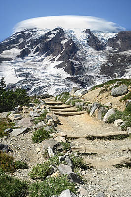 Photograph - Mount Rainier Trail by Jason Kolenda