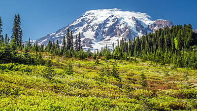 Photograph - Mount Rainier Wilderness by Pierre Leclerc Photography