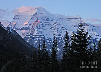 Photograph - Mount Robson At Sundown - Canada by Phil Banks