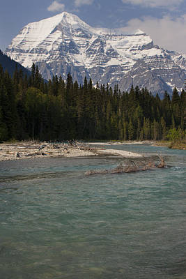 Photograph - Mount Robson Canadian Rockies by Tony Mills