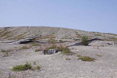 Photograph - Mount Saint Helens National Volcanic Monument - 0019 by S and S Photo