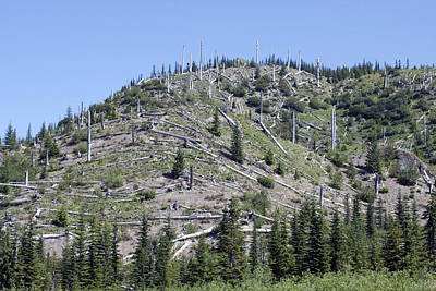 Photograph - Mount Saint Helens National Volcanic Monument - 0025 by S and S Photo