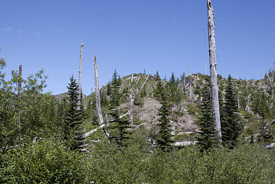 Photograph - Mount Saint Helens National Volcanic Monument - 0028 by S and S Photo