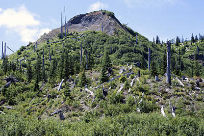 Photograph - Mount Saint Helens National Volcanic Monument - 0029 by S and S Photo