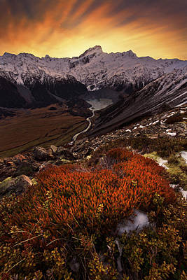 Mountain Sunset Photograph - Mount Sefton by Yan Zhang