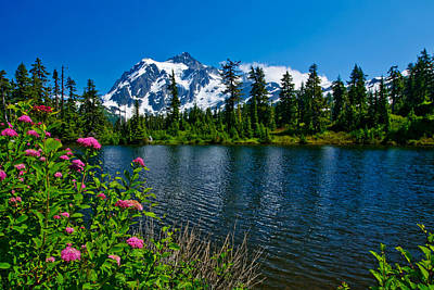 Mount Shuksan And Highwood Lake Print by Dan Mihai