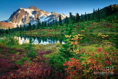 Evening Scenes Photograph - Mount Shuksan Fall Cornucopia by Inge Johnsson