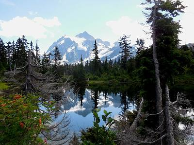 Mount Shuksan Reflection Art Print