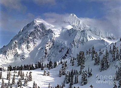 Washington Driftwood Beach Fog Wall Art - Photograph - Mount Shuksan - Washington State by Yefim Bam