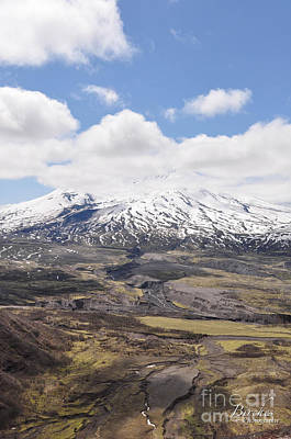 Photograph - Mount St. Helens by Birches Photography