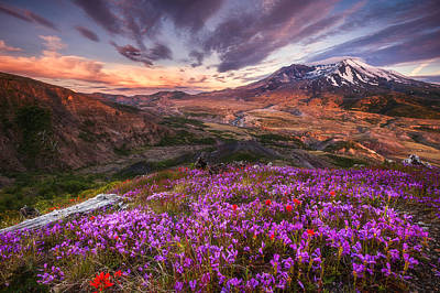 Photograph - Mount St Helens Lives On by Darren  White