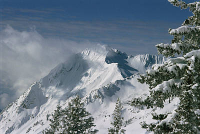 Mount Superior From Little Cottonwood Art Print by Howie Garber