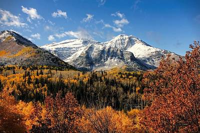 Photograph - Mount Timpanogos In Autumn Utah Mountains by Tracie Kaska