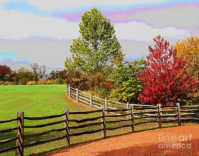 Photograph - Mount Vernon Fall Leaves by Larry Oskin