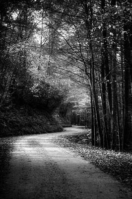 Golden Photograph - Mountain Back Road In Black And White by Greg Mimbs