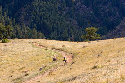 Steven Krull Royalty-Free and Rights-Managed Images - Mountain Biker by Steven Krull