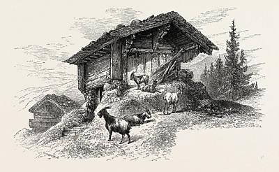 Switzerland Drawing - Mountain Chalet, Switzerland by Swiss School
