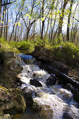Waterfall Photograph - Mountain Creek In Spring by Bill Cannon