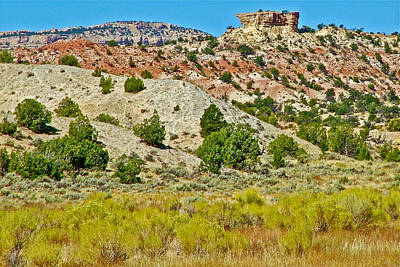 The Plateaus Digital Art - Mountain Desert Of Colorado Plateau Off Hole-in-the-rock Road In Grand Staircase Escalante Nmon-utah by Ruth Hager