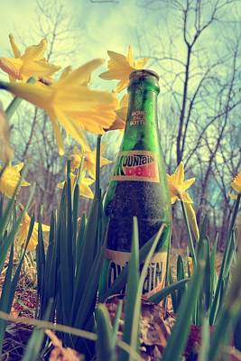 Photograph - Mountain Dew Daffodil by Emily Stauring