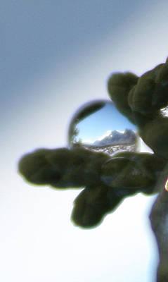 Mountain Dew Drop Art Print
