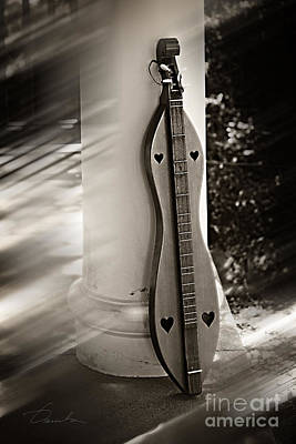Photograph - Mountain Dulcimer by Danuta Bennett