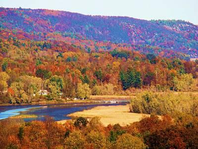Mountain Foliage Series 007 Art Print