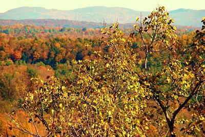 Mountain Foliage Series 012 Art Print