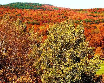 Mountain Foliage Series 016 Art Print