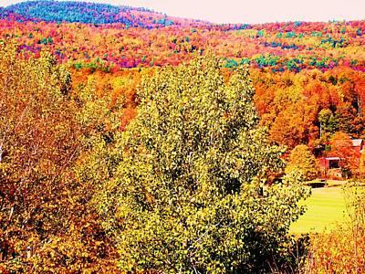 Mountain Foliage Series 017 Art Print