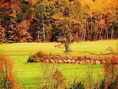 Mountain Foliage Series 038 Art Print