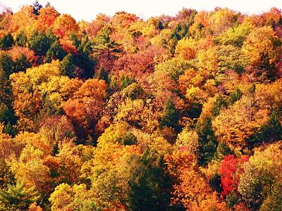 Mountain Foliage Series 054 Art Print
