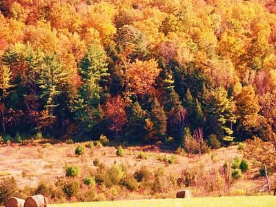 Mountain Foliage Series 057 Art Print